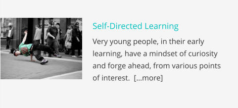 Self-Directed Learning Very young people, in their early learning, have a mindset of curiosity and forge ahead, from various points of interest.  […more]